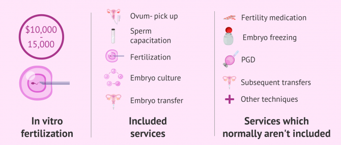 Imagen: What's included in the <a href='https://www.51rry.com/page/1613/' title='IVF'>IVF</a> cost?