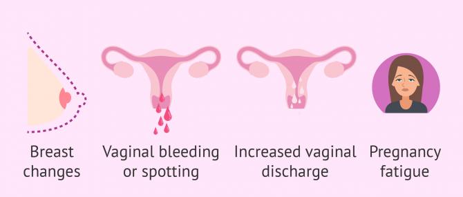 First pregnancy symptoms